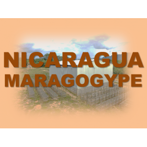 Никарагуа Марагоджип( 95% над скрийн 19) Албергос де Сеговия Груп - 0.250 кг.